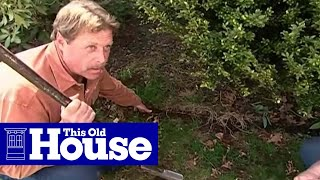 How to Edge a Garden Bed | This Old House