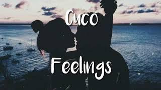 Cuco   Feelings (lyrics English And Spanish) :3