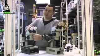 Сравнение микроскопов МБС-10 и МБС-9 -