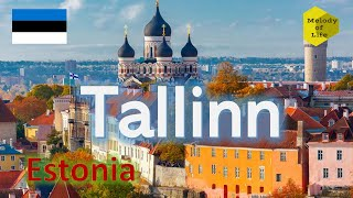 Walking in Tallinn Capital of Estonia During Summer