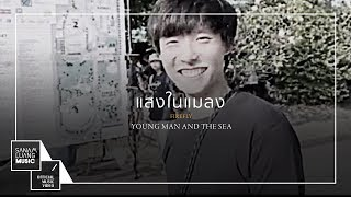 แสงในแมลง (Firefly) l YOUNG MAN AND THE SEA【Official MV】