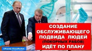 Создание обслуживающего подвида людей (рабов) никто не сможет остановить Ковальчук МВ
