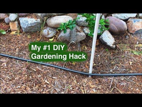 My #1 DIY Gardening Hack