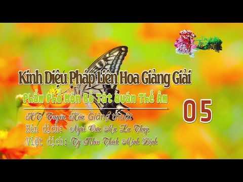 Phẩm Phổ Môn Bồ Tát Quán Thế Âm Thứ Hai Mươi Lăm 5/10