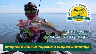Карта рыболова и охотника север волгоградского водохранилища