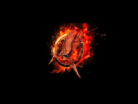 Hunger Games: Catching Fire (Mocking Jay Bird Scene)