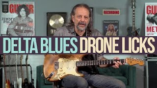 Delta Bluesy Drone Licks in the Key of E with Andy Aledort
