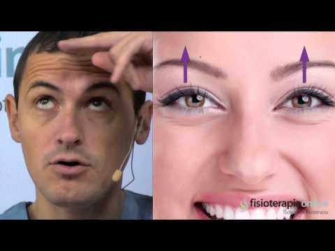 Tratamiento de la musculatura de los ojos - Fisioterapia Bilbao