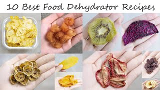 10 Best Food Dehydrator Recipes You Will Want To Try