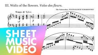 Waltz of the Flowers - Tchaikovsky