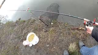Фидеры для ловли карпа