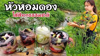 หัวหอมดอง สูตรธรรมชาติ /EP.187/ ทำขายก็ดี ทำกินก็เริ่ด อาหารเกาหลี/สะใภ้เกาหลี by Korean