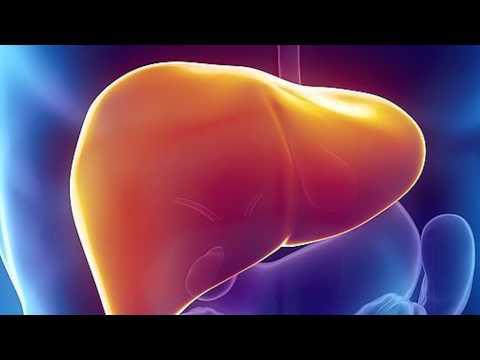 Гепатит виды гепатита бывают
