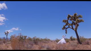 JOSHUA TREE by Jason Nutter & Jesika von Rabbit - Directed by Jessica Janos