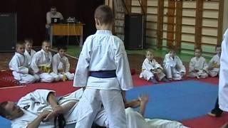 Ивьевская федерация боевых искусств