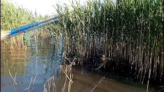 Чернобыль зона отчуждения рыбалка со съемки