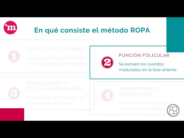 Método ROPA o maternidad compartida de reproducción asistida - Ginefiv