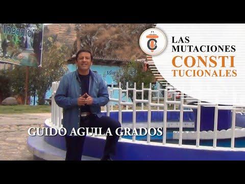 LAS MUTACIONES CONSTITUCIONALES - Tribuna Constitucional 74 - Guido Aguila Grados