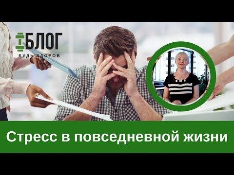 Н.Г. Байкулова о роли стресса в жизни