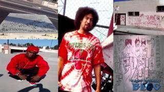 Neighborhood Family Bloods B-Real's Hood (Los Angeles)
