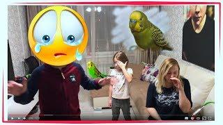 Что с моим попугаем ((( 😭   волнистый попугай ?