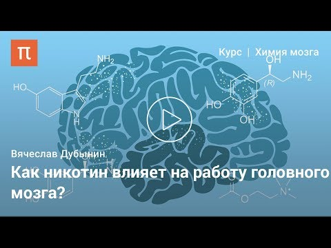 Ацетилхолин —Вячеслав Дубынин