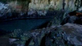 preview picture of video 'Cenote Cuzama (Tza-Ujun-Kat)'
