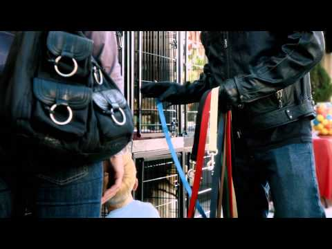 Harley-Davidson Commercial (2011) (Television Commercial)