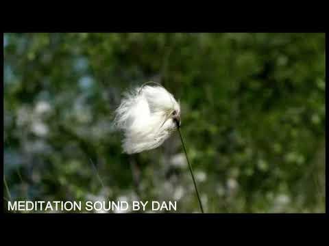 Sono Profundo - Relaxar - Canto de Pssaros - Meditao - Musica Relajante -Meditation sound - sv132