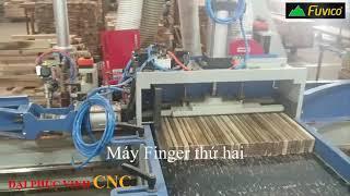 Dây chuyền ghép Finger tự động IAT-620. Đỉnh cao của máy gỗ ghép thanh
