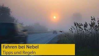 Fahren bei Nebel: Das gilt für Autofahrer   ADAC   Kholo.pk