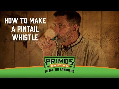 The Pintail Whistle video thumbnail