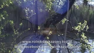 Film do artykułu: Rolnik Szuka Żony 6. Można...