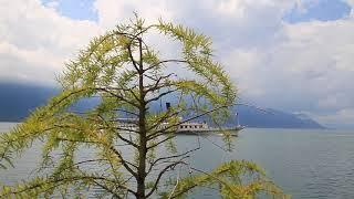 Монтре. Женевское озеро. Switzerland. Montreux