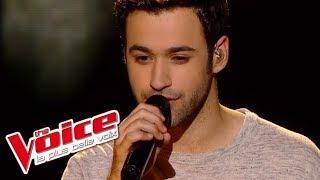 Christophe – Les mots bleus | Anthony Touma | The Voice France 2013 | Demi-Finale