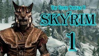 The Elder Scrolls V: Skyrim -