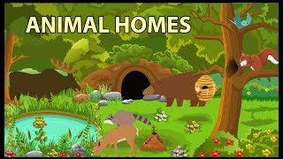 Animal Homes Vocabulary for Kids