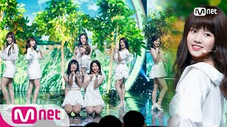 [NATURE - Allegro Cantabile] Debut Stage     M COUNTDOWN 180823 EP.583