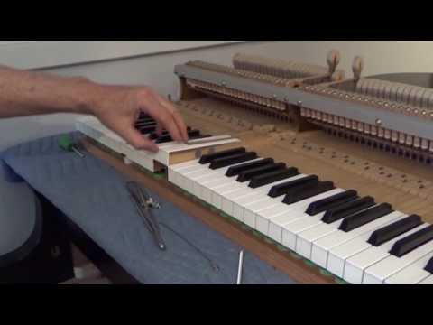 Regulate grand piano – 15 sample front punchings off