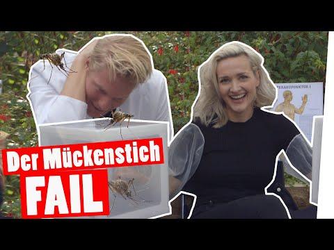 Bestrafung: Der große Mückenstich-FAIL   