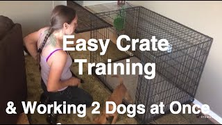 How to Crate Train a Puppy - Training 2 Dogs at Once | Grisha Stewart