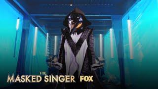 Who Is Penguin?   Season 2   THE MASKED SINGER