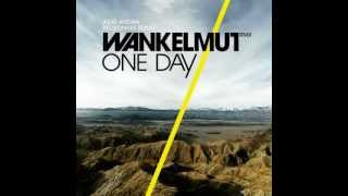Asaf Avidan & the Mojos - One Day / Reckoning Song (Wankelmut Remix) (Club Mix)