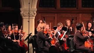 Mozart Eine kleine Nachtmusik Music