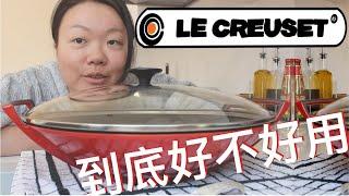 大琳测评|Le Creuset 法国名牌铸铁锅到底好不好用,唠唠优缺点,清洗方法和个人使用感受,推荐程度【大琳DALIN】