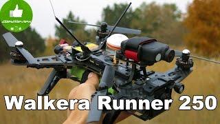 ✔ Walkera Runner 250 - быстрый и красивый квадрокоптер с FPV! Gearbest