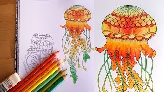 Lost Ocean Speed Colouring Orange And Green Blended Jellyfish