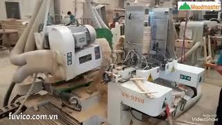 Woodmaster   Máy phay mộng dương 2 đầu CNC WM-D200CNC