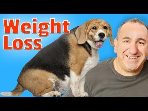 Pierderea în greutate hcl