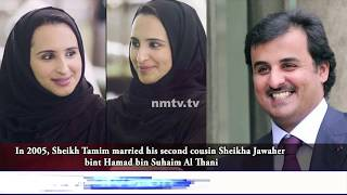 Dynamic Emir Sheikh Tamim bin Hamad Al Thani of Qatar